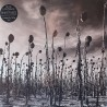 Dead Can Dance - Anastasis - 180g HQ Gatefold Vinyl 2 LP
