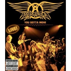 Aerosmith - You Gotta Move - DVD + CD