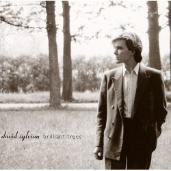David Sylvian - Brilliant Trees - CD