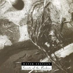 David Sylvian - Secrets Of The Beehive - CD