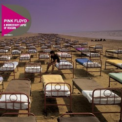 Pink Floyd - A Momentary of Reason - CD vinyl replica