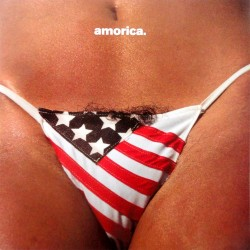 Black Crowes - Amorica - CD
