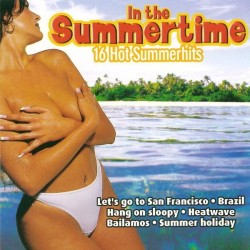 V/A 16 Hot Summerhits - In The Summertime - CD