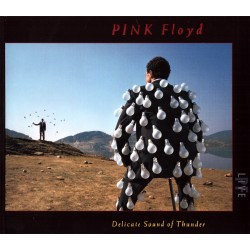 Pink Floyd - Delicate Sound Of Thunder-Live - 2CD vinyl replica