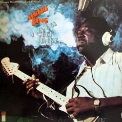 Albert King - I Wanna Get Funky - CD