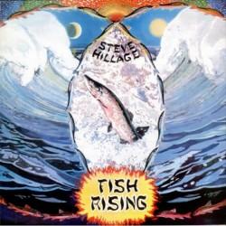 Steve Hillage - Fish Rising - CD