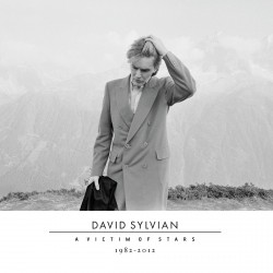 David Sylvian - A Victim Of Stars 1982-2012 - 2CD