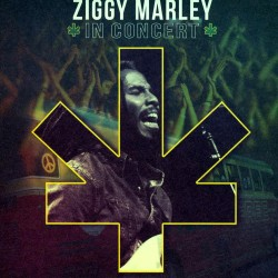 Ziggy Marley - In Concert - CD Digipack