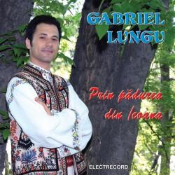 Gabriel Lungu - In padurea din Icoana - CD