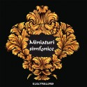 Symphonic Miniatures: Boccherini, Mozart, Dvorak, Suppe, Schubert, Liszt - CD