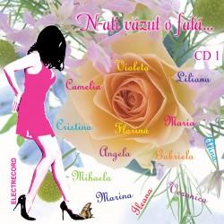 Various Artists - N-ati vazut o fata? - slagare - CD