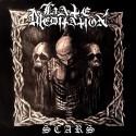 Hate Meditation - Scars - Vinyl LP