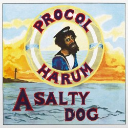 Procol Harum - A Salty Dog - 180g HQ Vinyl LP