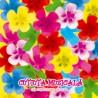 Various Artists - Cutiuta Muzicala - Cele mai frumoase cantecele - CD